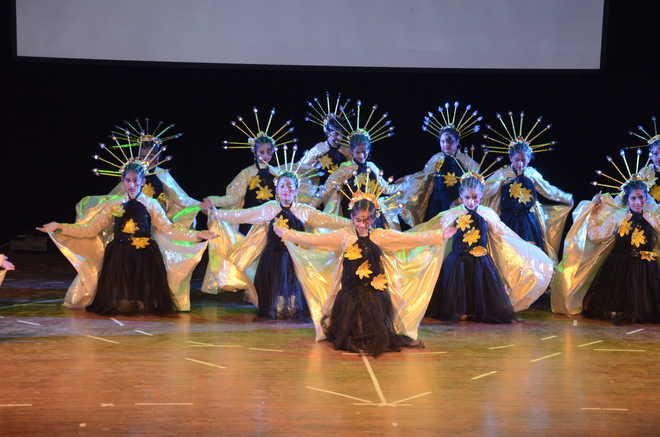 Annual Day Show Sheds Light On Dying Ecosystems