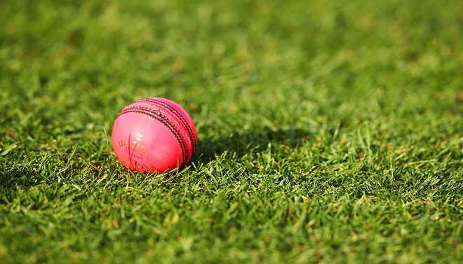 Eden Garden Gears Up For The Pink Test
