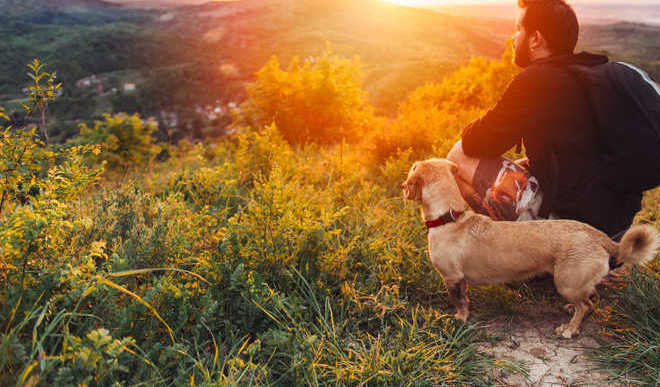 5 Dog-friendly Parks In India
