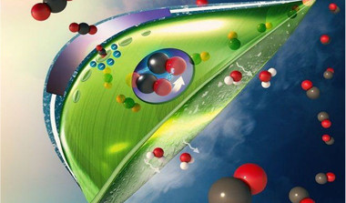 Artificial Leaves That Can Absorb CO2 Faster Than Real Ones