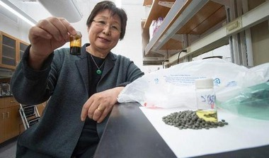 Scientists Turn Plastic Waste Into Fuel For Cars