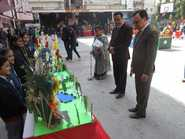 Lucknow Public Collegiate organises FLOWER ARRANGEMENT