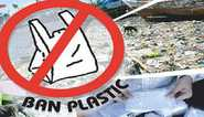 Mohith: 5 Demerits Of Using Plastic
