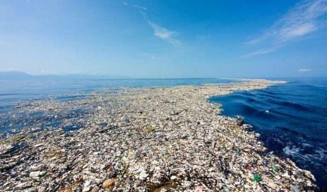 Plastic Has Reached The Deepest Point Of The Ocean