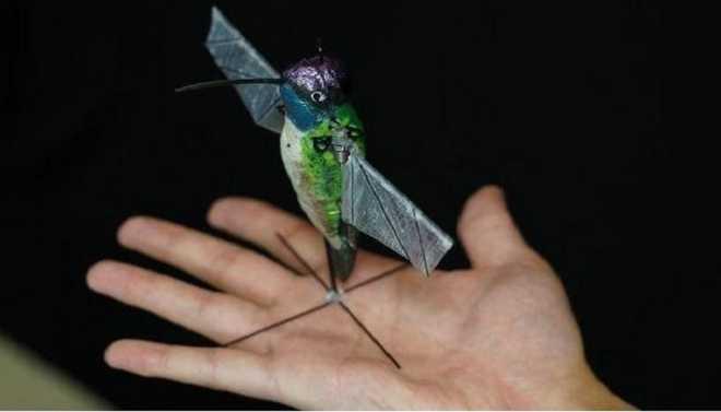 Drone Uses AI To Fly Like Hummingbird