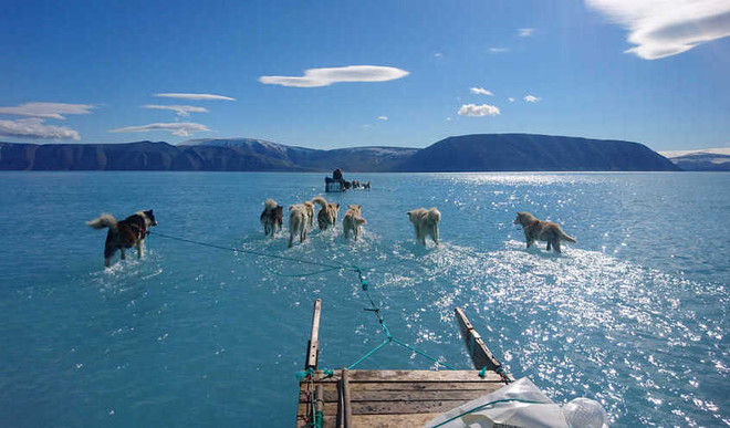 Greenland Lost 2 Billion Tons Ice In One Day