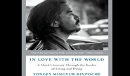Book Review: In Love with the World