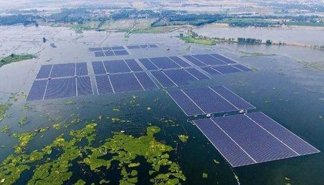 Giant Solar Farms To Solve Climate Change