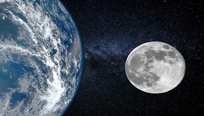 Earth's Toughest Creatures May Be On Moon