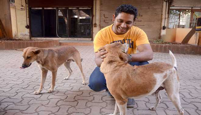 Gayathri: Animals Form Key Part Of Human Society