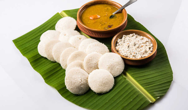 Idli Sambhar Can Help You Lose Weight