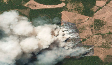 Amazon Rainforest Fire: Here's What You Can Do
