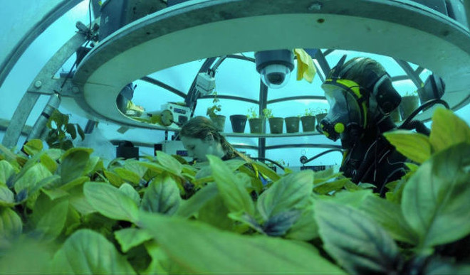 Underwater Farming Soon Be A Thing