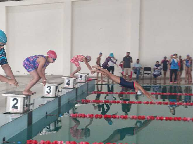YPS Swimmers Sweep Medals At District Level Competition