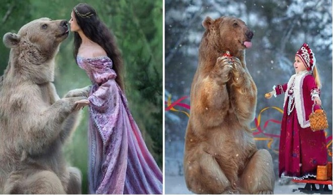 Bear Raised By Humans Becomes Model