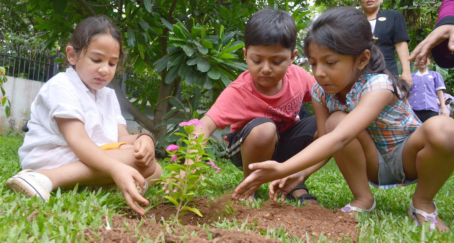 'Green Spaces May Influence Kids' BMI'