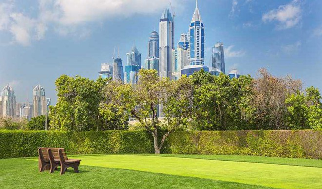 Dubai's Leap Towards A Green Future!