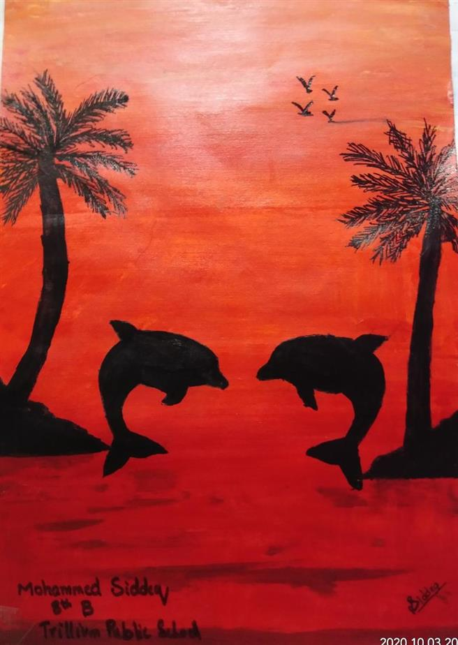 Dolphins: Mohammed Siddeq