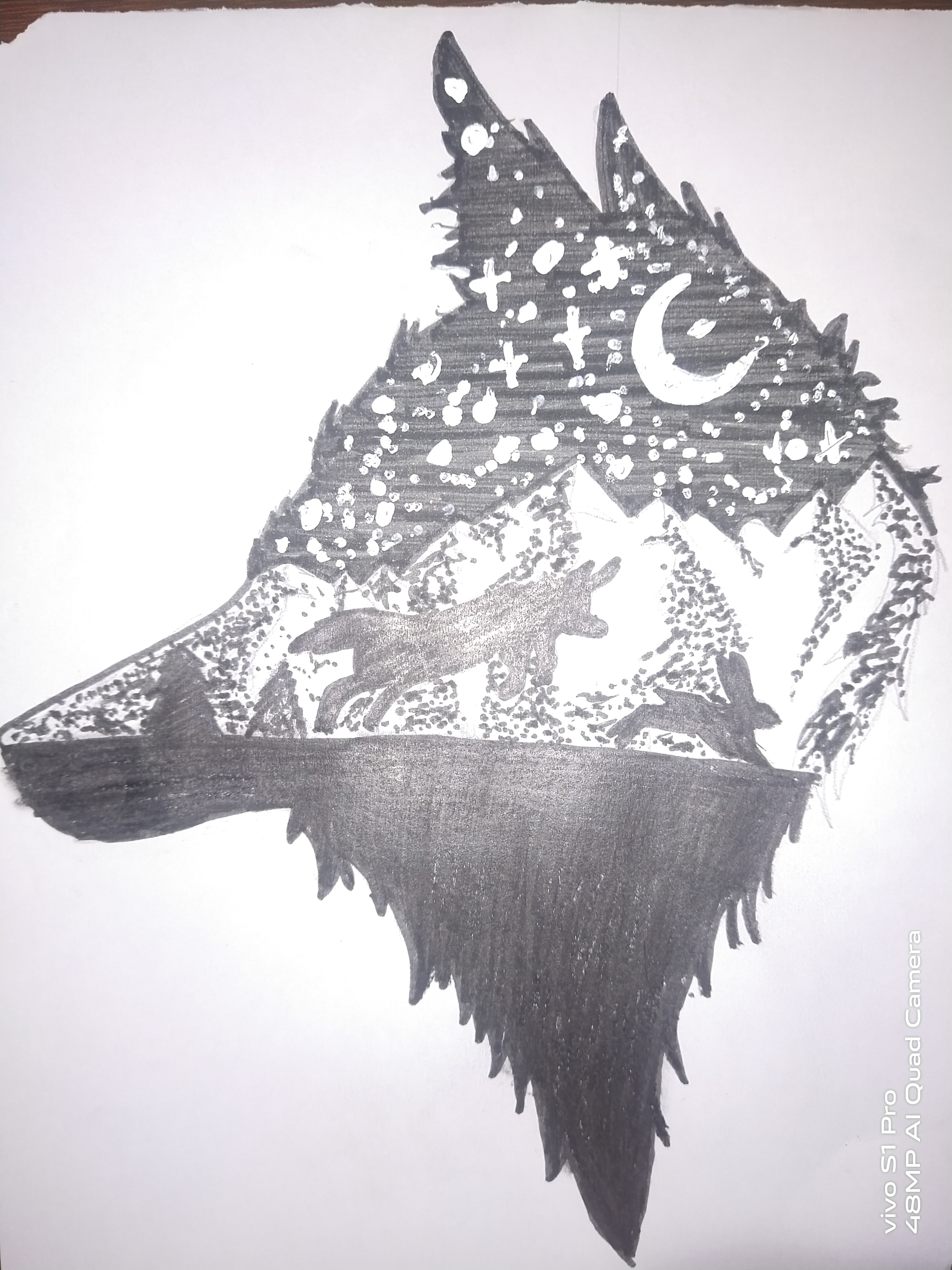 Charitharth's Wolf Drawing