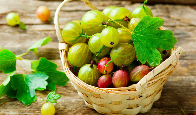 Amla Can Fight Air Pollution!