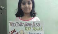 Spreading awareness against use of 'manjha'