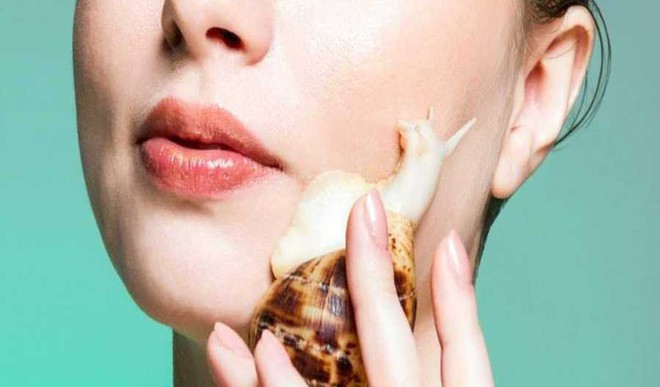 Why Koreans Use Snail Mucin On Skin