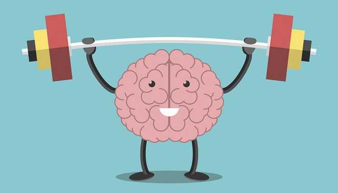 Harshita: Can We Measure Intelligence?