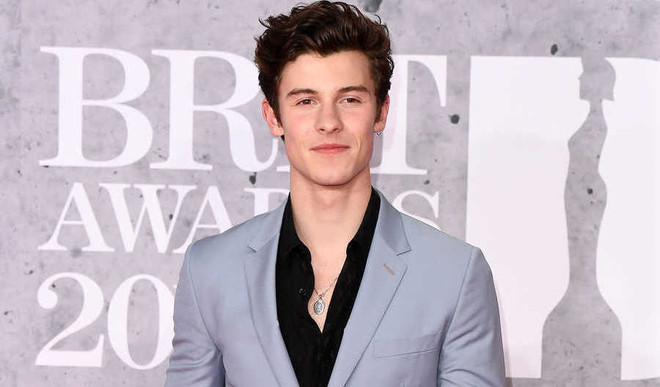 Shawn Donates $175K For Coronavirus Relief