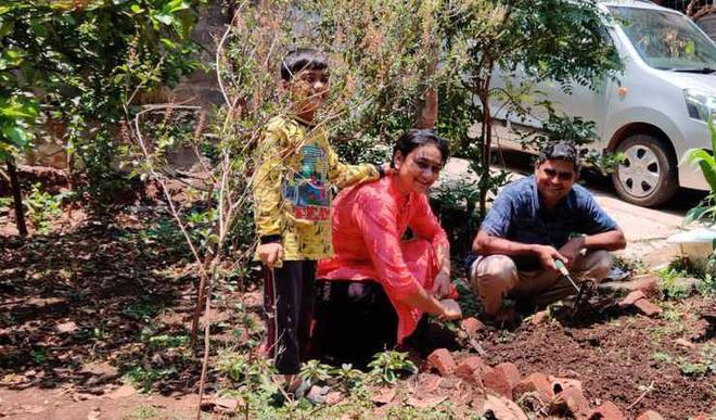 Build a Family Survival Garden