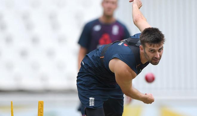 Should Cricket Be Resumed?