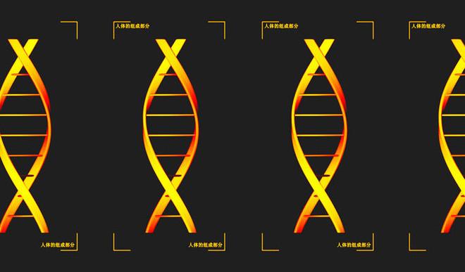 China's DNA Surveillance Net