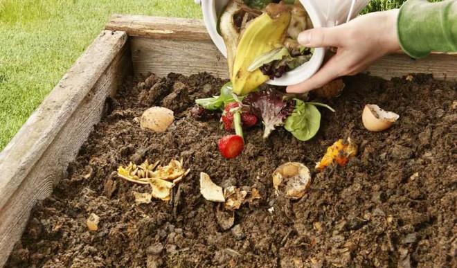 Do Home Composting
