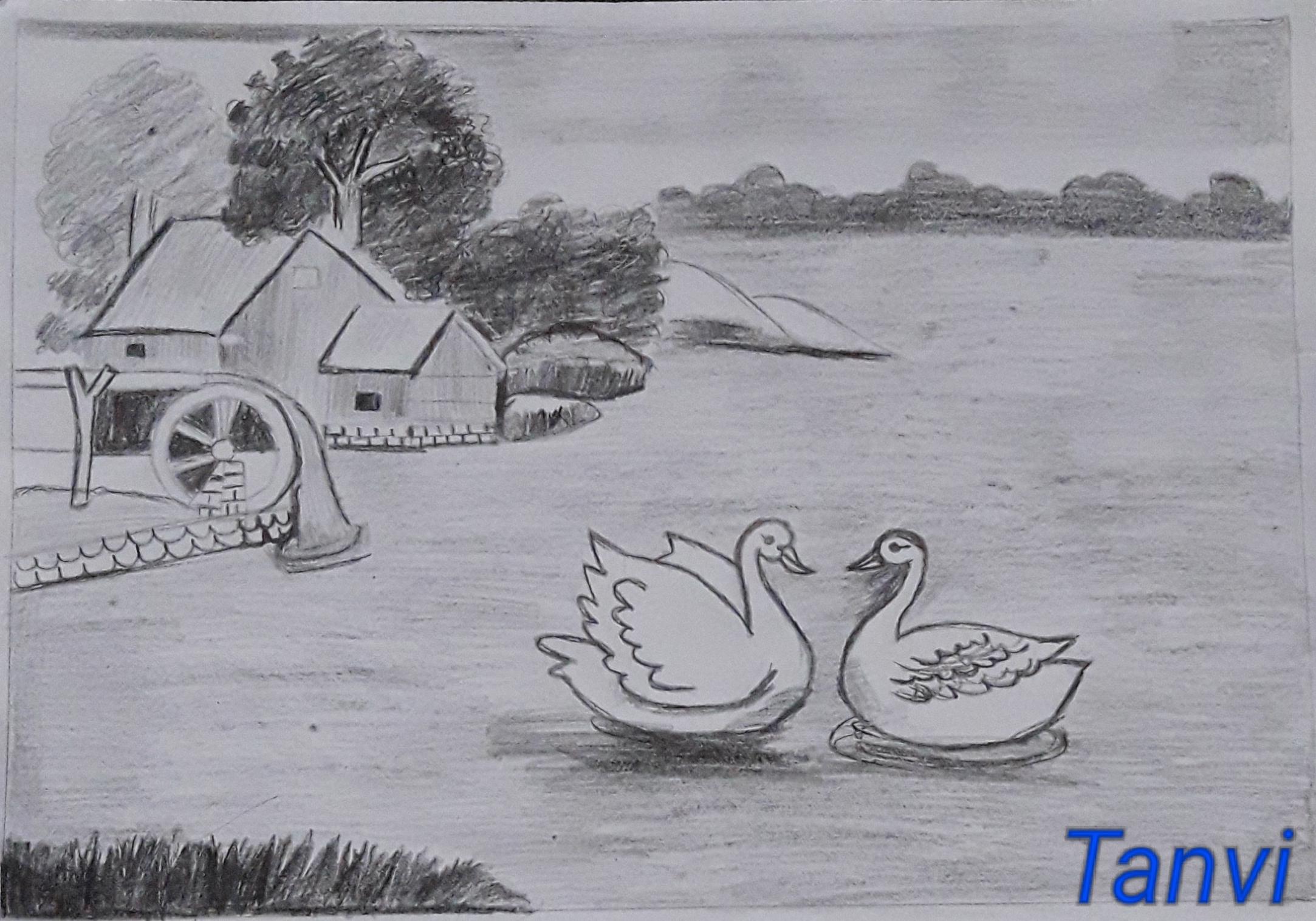 Raga's Sketch 'Nature's Gift'