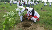 Anya: Plant Trees To Make The World A Better Place