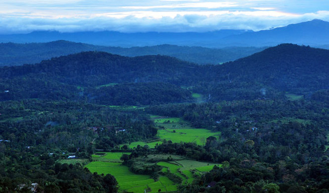 SK: A Place To Chill - Coorg