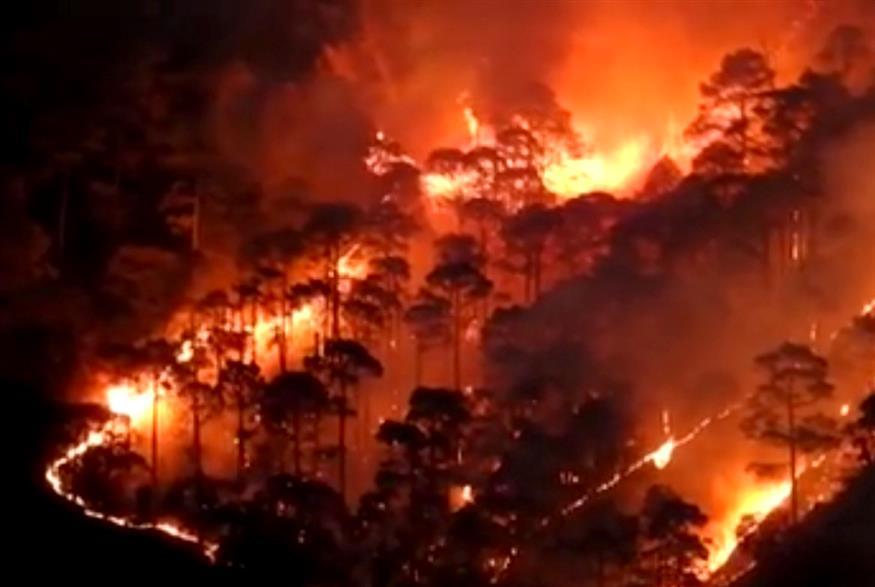 Rains Scaled Down U'khand Forest Fire?