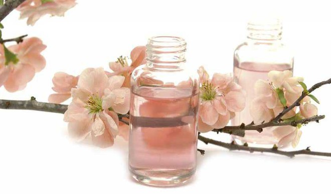 Japanese Cherry Blossoms For Skincare