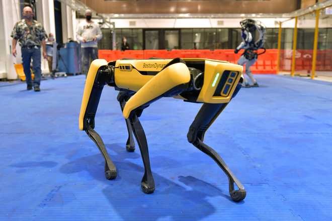 NYPD's Robot Dog Returns To Work