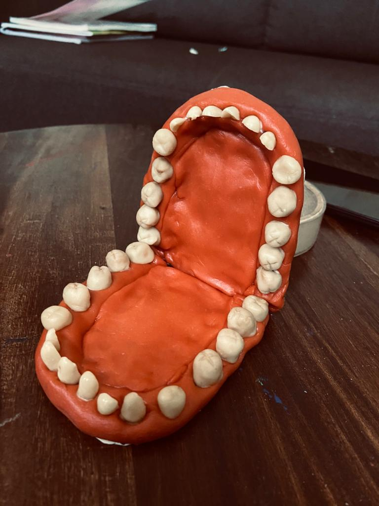 Anagha's Home Made Model Of Mouth
