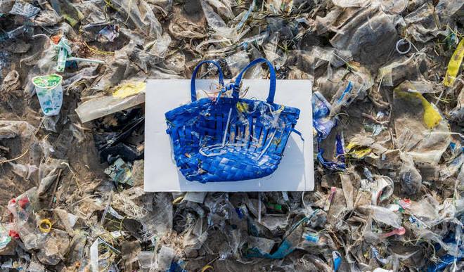 Plastic Threatens Fauna In Asia-Pacific: UN